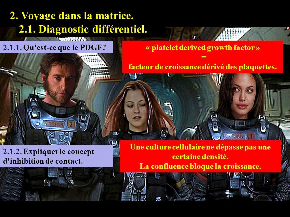 2.1.1 1. Prologue. 2. Voyage dans la matrice. 2.1. Diagnostic différentiel. 2.1.1. Quest-ce que le PDGF?« platelet derived growth factor » = facteur d