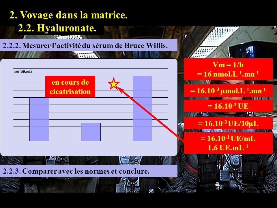 2.2.2 1. Prologue. 2. Voyage dans la matrice. 2.2. Hyaluronate. 2.2.2. Mesurer l'activité du sérum de Bruce Willis. Vm = 1/b = 16 nmol.L -1.mn -1 = 16