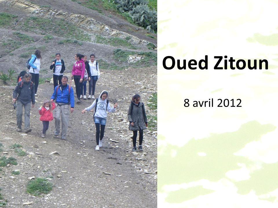Oued Zitoun 8 avril 2012