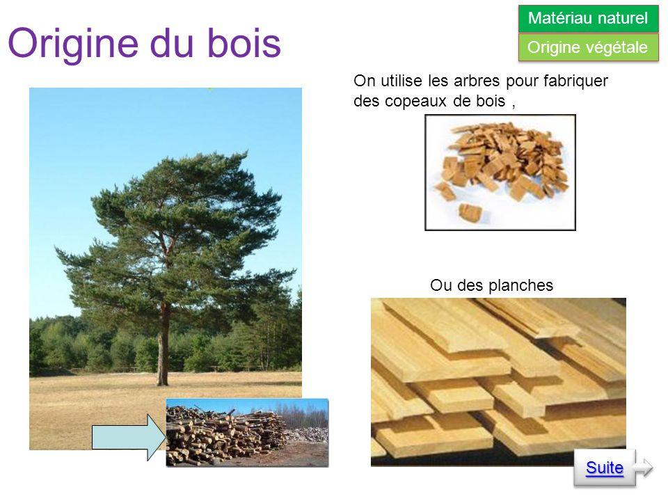 Origine du bois On utilise les arbres pour fabriquer des copeaux de bois, Ou des planches Suite Matériau naturel Origine végétale
