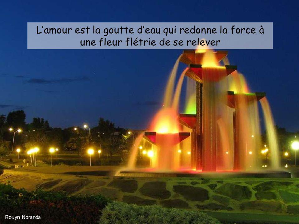 Lamour est la goutte deau qui redonne la force à une fleur flétrie de se relever Rouyn-Noranda