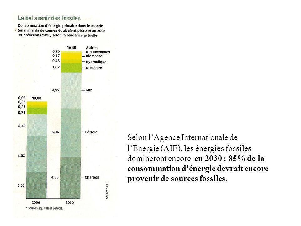 Selon lAgence Internationale de lEnergie (AIE), les énergies fossiles domineront encore en 2030 : 85% de la consommation dénergie devrait encore provenir de sources fossiles.
