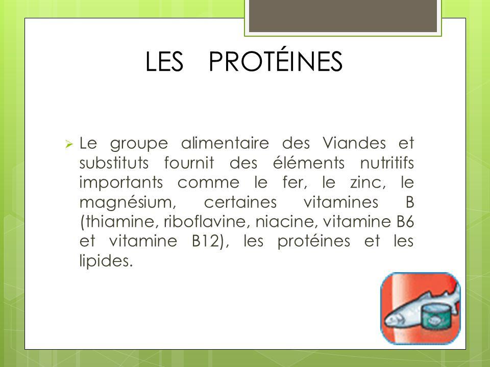 LES PROTÉINES Le groupe alimentaire des Viandes et substituts fournit des éléments nutritifs importants comme le fer, le zinc, le magnésium, certaines vitamines B (thiamine, riboflavine, niacine, vitamine B6 et vitamine B12), les protéines et les lipides.
