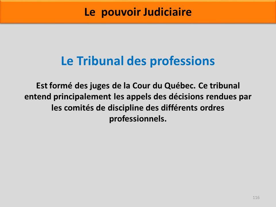 Le Tribunal des professions Est formé des juges de la Cour du Québec. Ce tribunal entend principalement les appels des décisions rendues par les comit