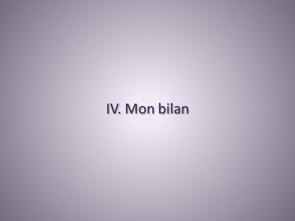 IV. Mon bilan