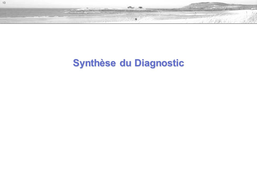 Synthèse du Diagnostic 13