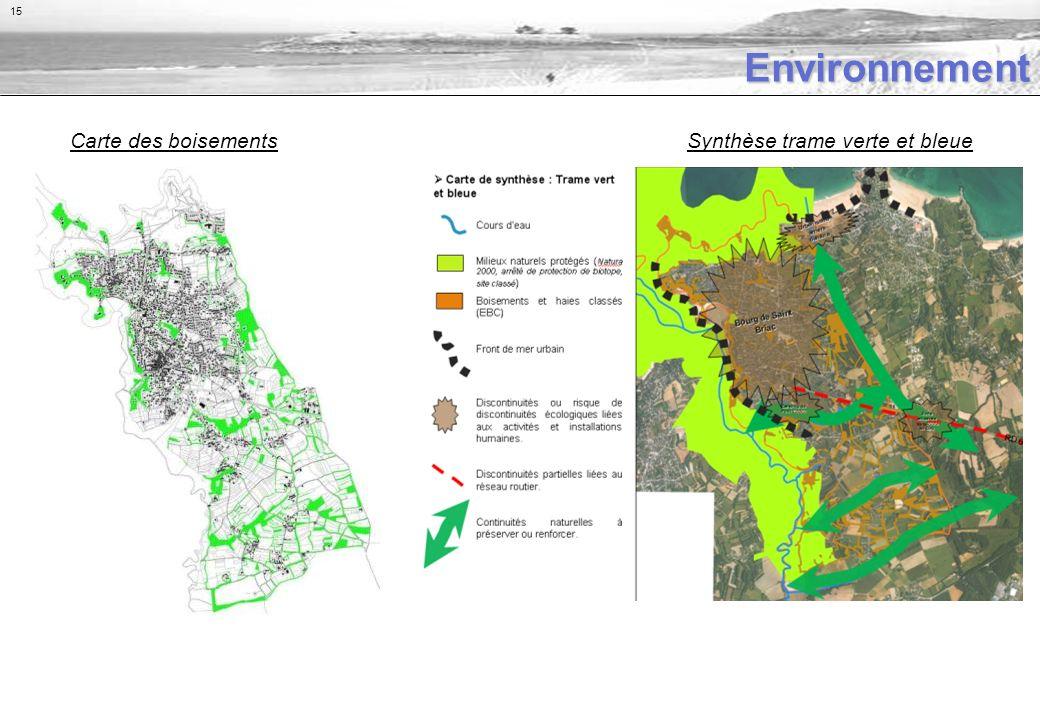 Environnement Carte des boisementsSynthèse trame verte et bleue 15