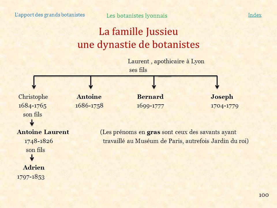 Lapport des grands botanistes Index Laurent, apothicaire à Lyon ses fils Christophe Antoine BernardJoseph 1684-1765 1686-1758 1699-1777 1704-1779 son