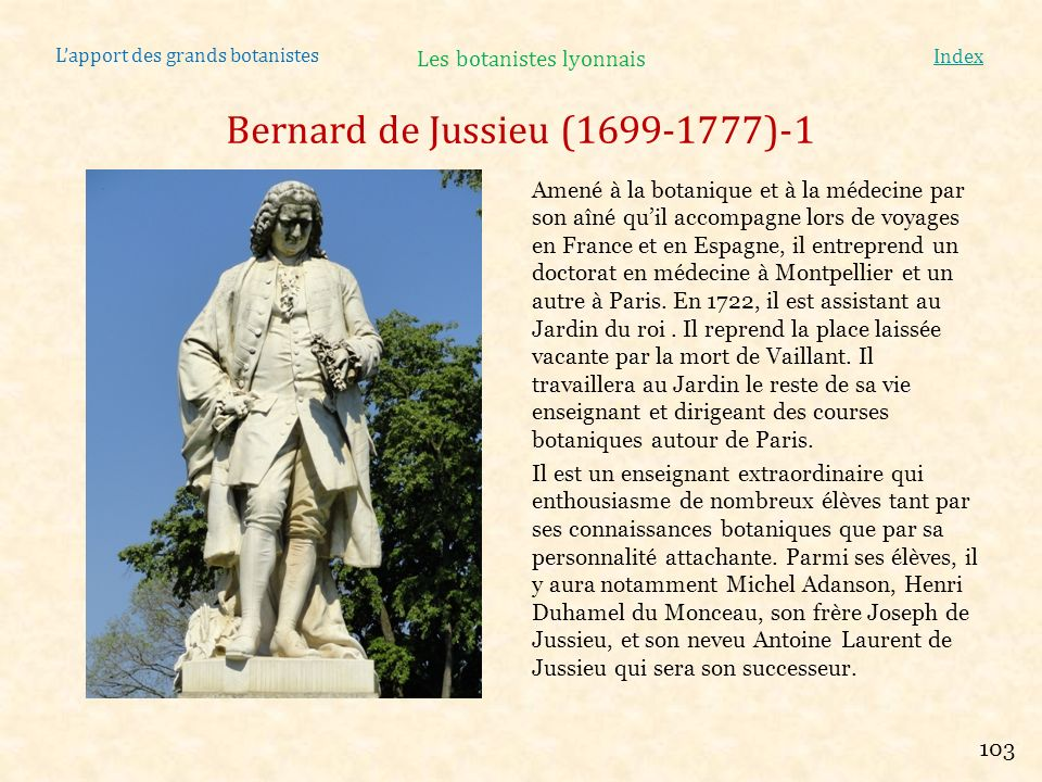 Lapport des grands botanistes Index Bernard de Jussieu (1699-1777)-1 Amené à la botanique et à la médecine par son aîné quil accompagne lors de voyage