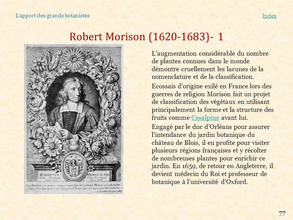 Lapport des grands botanistes Index Pierre Magnol (1638-1715)- 1 Né à Montpellier, il y obtiendra brillam- ment son doctorat de médecine en 1659 dans luniversité de sa ville, la plus réputée de lépoque.
