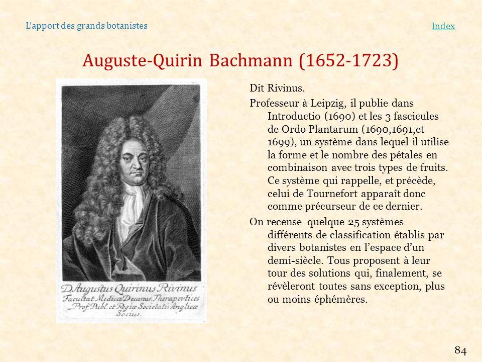 Lapport des grands botanistes Index Auguste-Quirin Bachmann (1652-1723) Dit Rivinus. Professeur à Leipzig, il publie dans Introductio (1690) et les 3