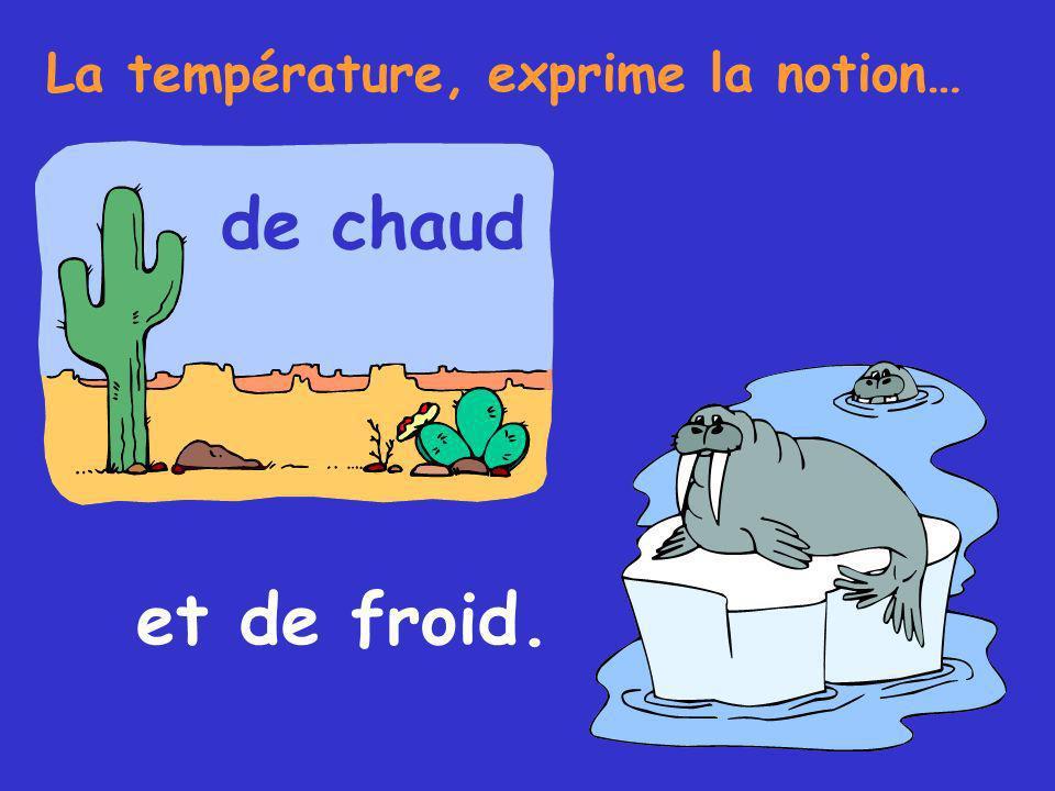 La température, exprime la notion… de chaud et de froid.
