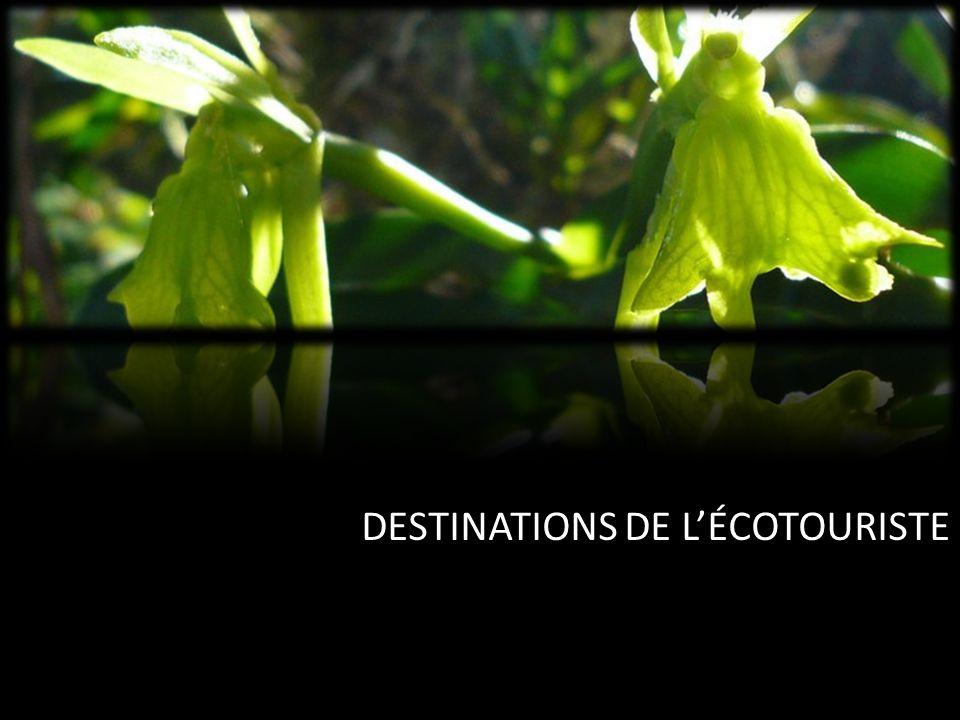 DESTINATIONS DE LÉCOTOURISTE