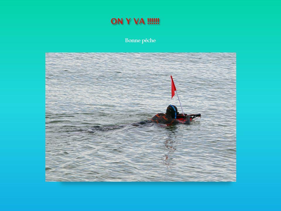 ON Y VA !!!!!! ON Y VA !!!!!! Bonne pêche