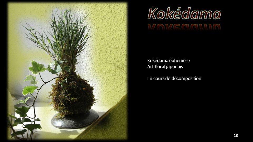 Kokédama éphémère Art floral japonais En cours de décomposition 18