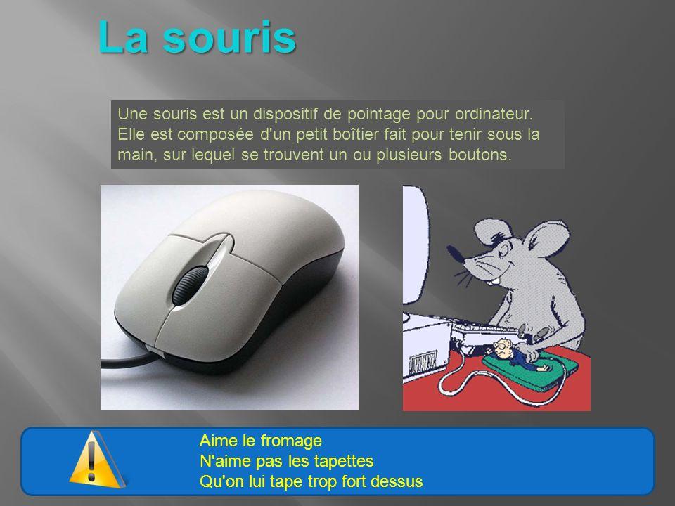 Aime le fromage N'aime pas les tapettes Qu'on lui tape trop fort dessus La souris Une souris est un dispositif de pointage pour ordinateur. Elle est c