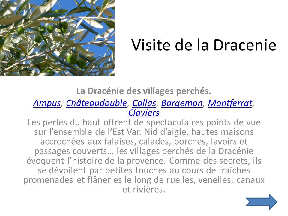 Visite de la Dracenie La Dracénie des villages perchés.