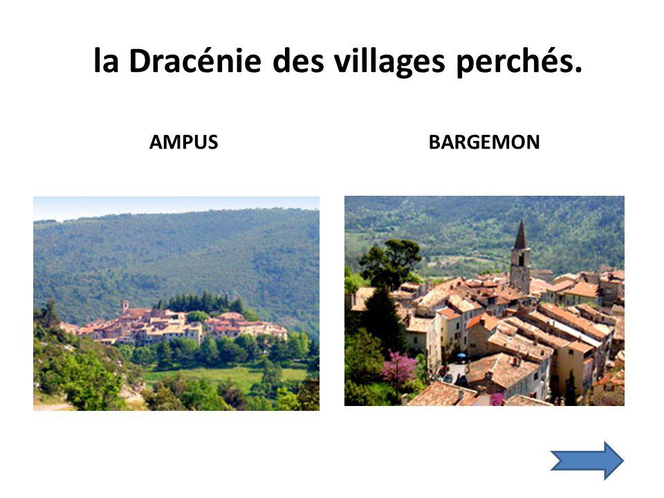 la Dracénie des villages perchés. AMPUS BARGEMON