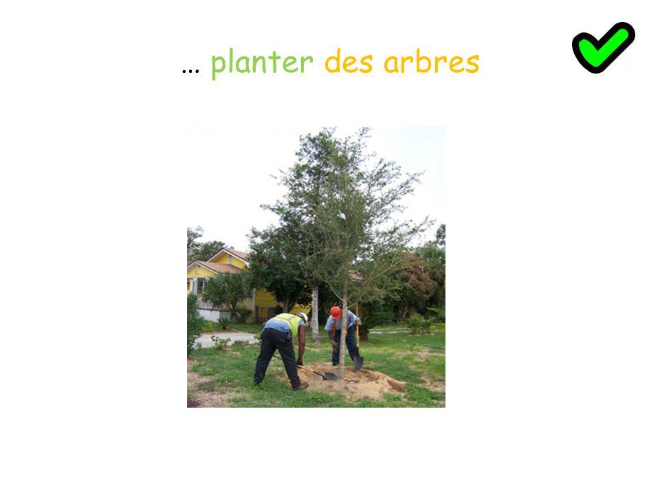 … planter des arbres