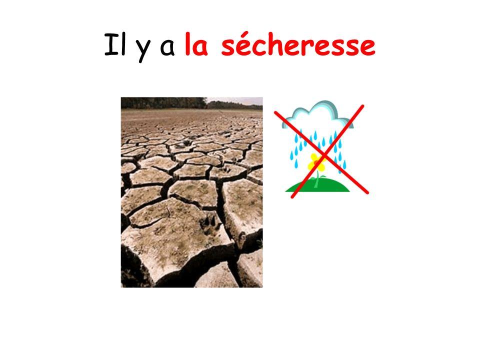 Il y a la sécheresse