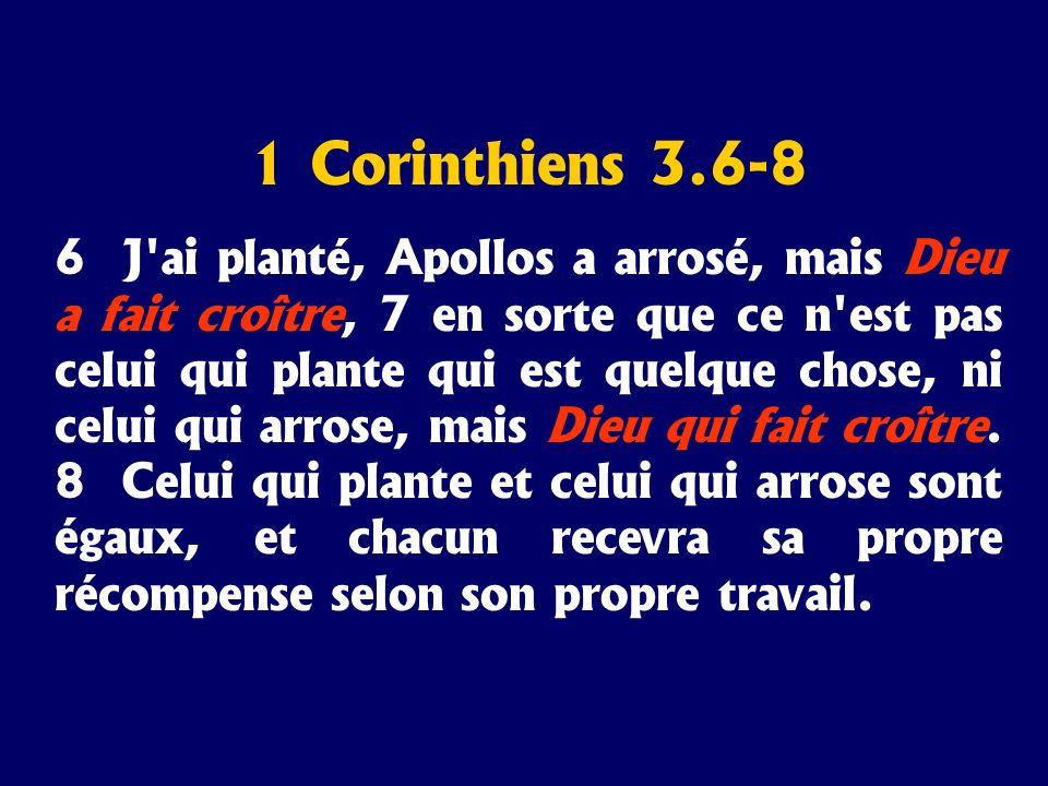 1 Corinthiens 3.6-8 6 J'ai planté, Apollos a arrosé, mais Dieu a fait croître, 7 en sorte que ce n'est pas celui qui plante qui est quelque chose, ni