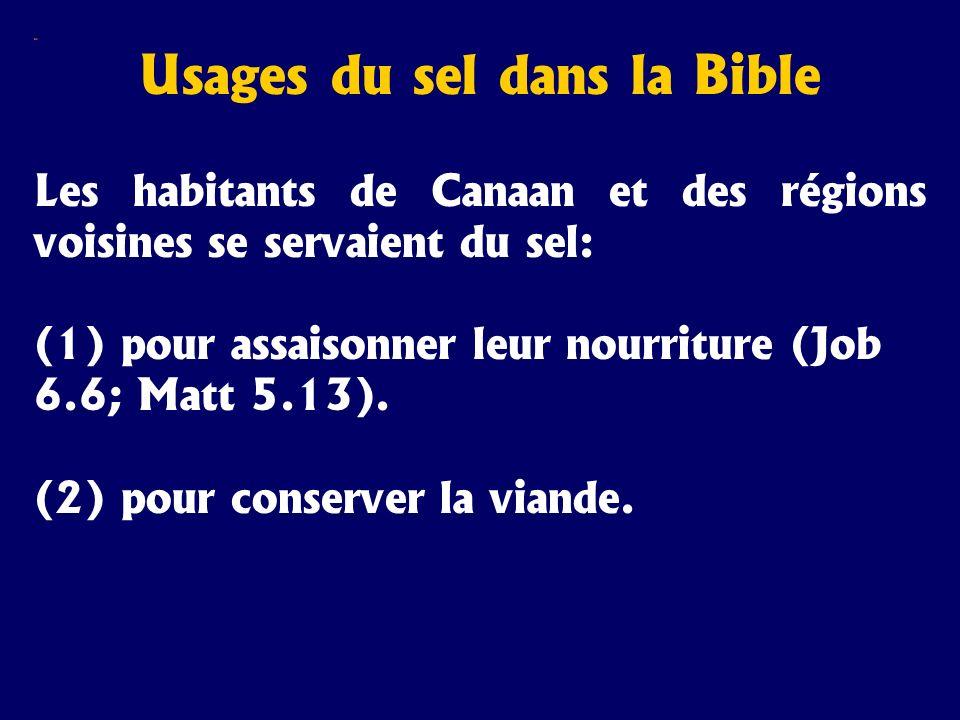 Sel Usages du sel dans la Bible Les habitants de Canaan et des régions voisines se servaient du sel: (1) pour assaisonner leur nourriture (Job 6.6; Ma