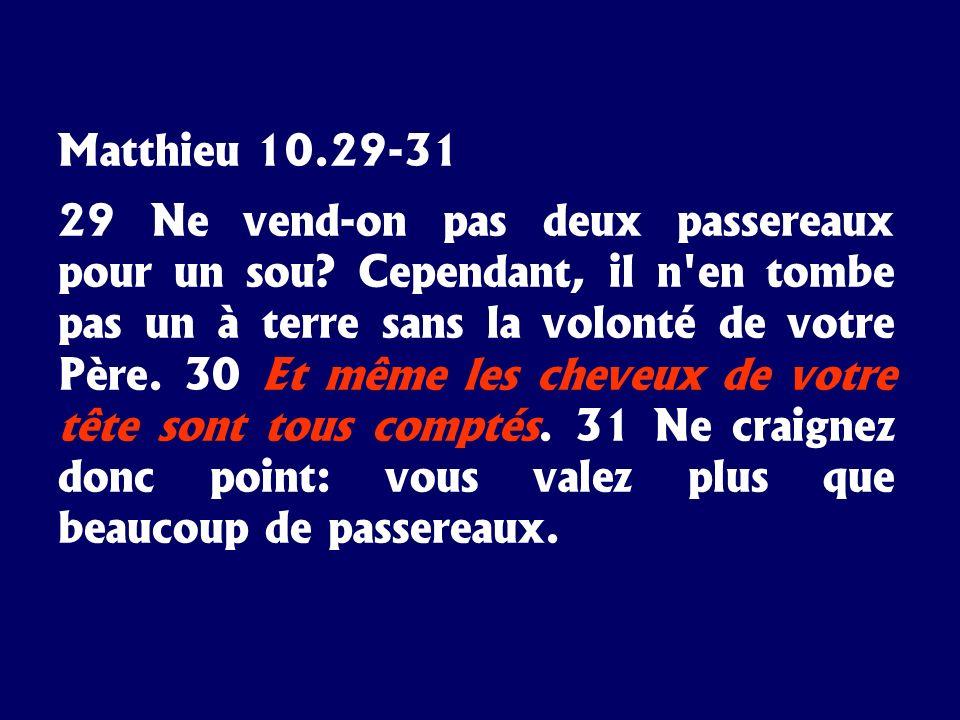 Matthieu 10.29-31 29 Ne vend-on pas deux passereaux pour un sou? Cependant, il n'en tombe pas un à terre sans la volonté de votre Père. 30 Et même les