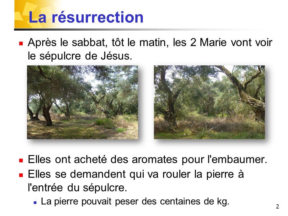 2 La résurrection Après le sabbat, tôt le matin, les 2 Marie vont voir le sépulcre de Jésus.