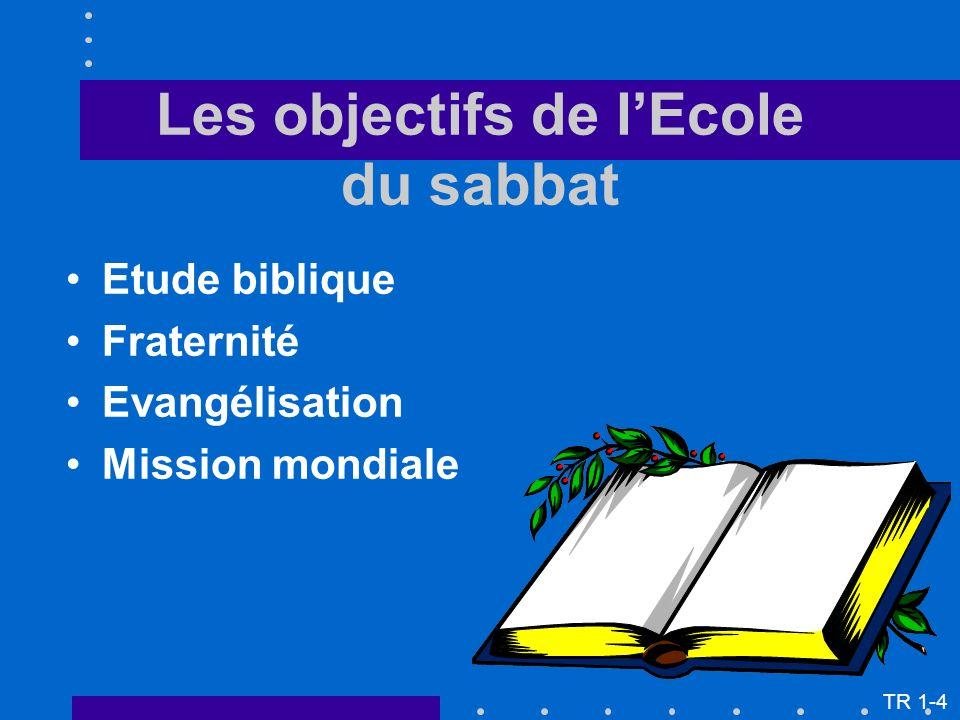 Quelques-uns des thèmes ou concepts vitaux à traiter à lEcole du sabbat : La nature de Dieu La nature de l homme Le problème du péché Le salut La création Le ciel TR 3-5