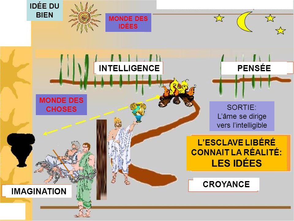 IDÉE DU BIEN MONDE DES IDÉES MONDE DES CHOSES INTELLIGENCEPENSÉE CROYANCE IMAGINATION LESCLAVE LIBÉRÉ CONNAIT LA RÉALITÉ: LES IDÉES SORTIE: Lâme se dirige vers lintelligible