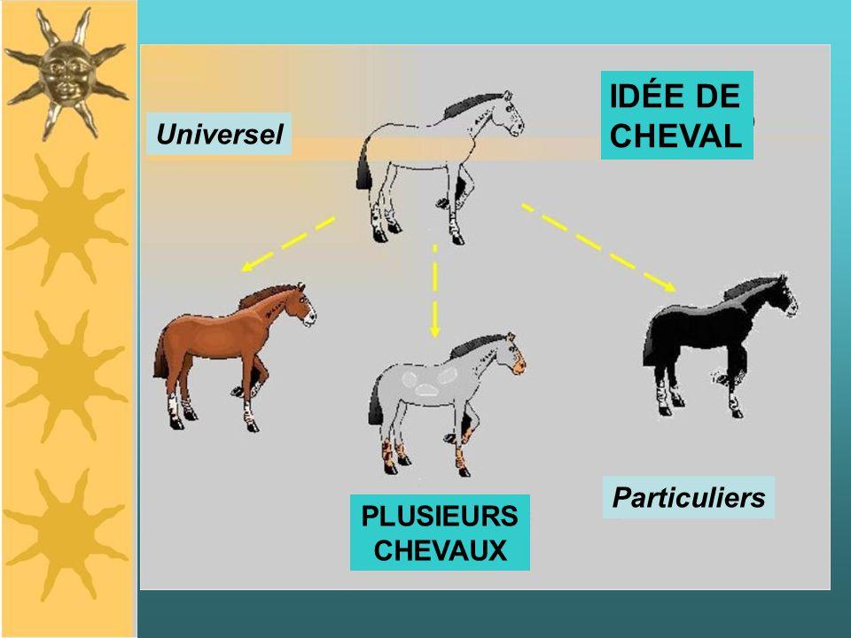 Universel Particuliers IDÉE DE CHEVAL PLUSIEURS CHEVAUX
