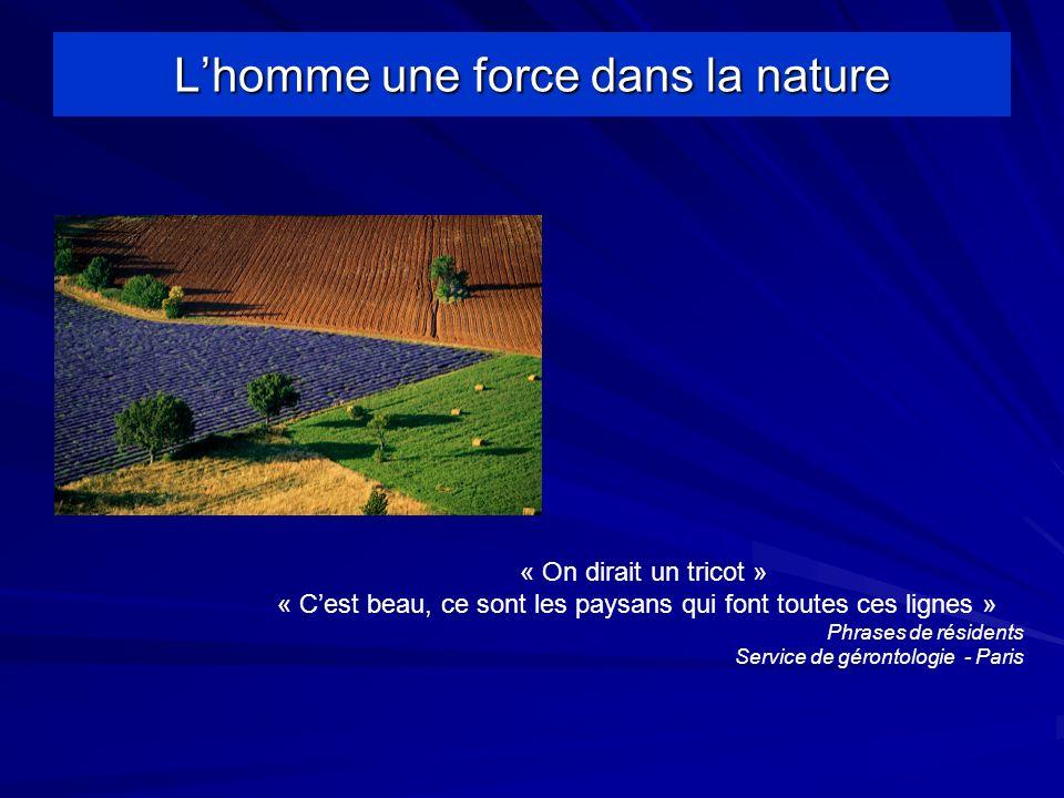Lhomme une force dans la nature « On dirait un tricot » « Cest beau, ce sont les paysans qui font toutes ces lignes » Phrases de résidents Service de gérontologie - Paris