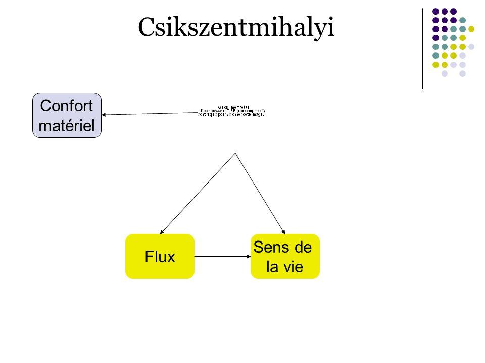 Csikszentmihalyi Flux Sens de la vie Confort matériel