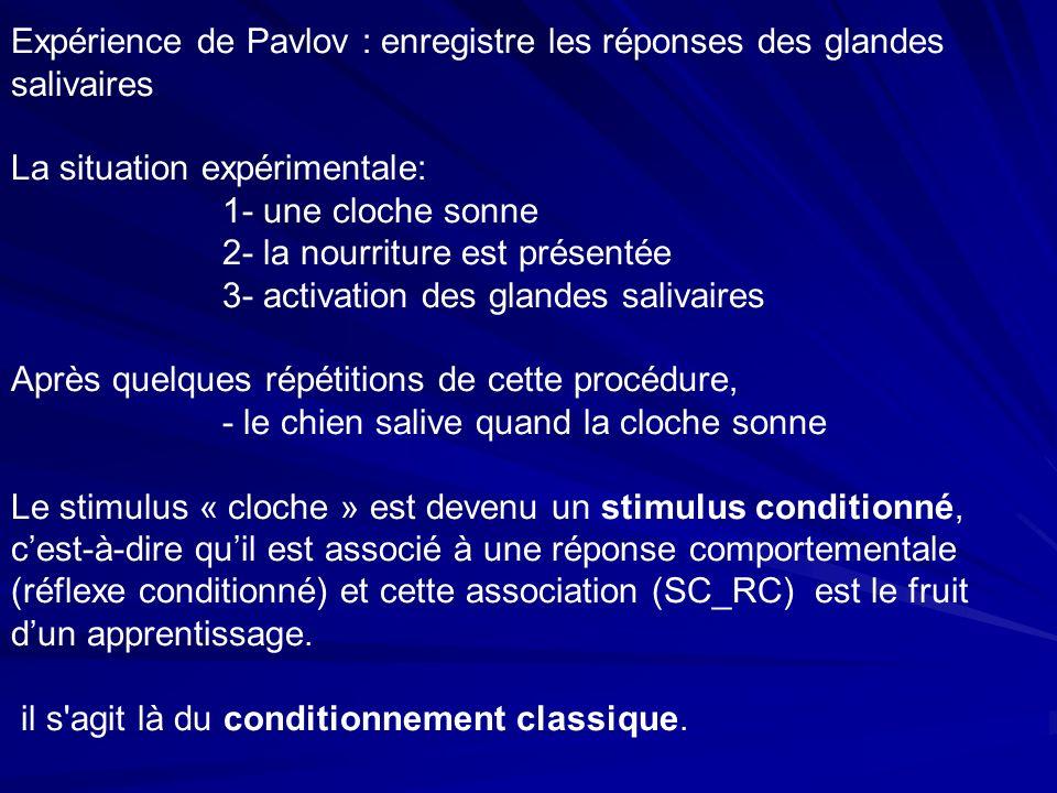 Expérience de Pavlov : enregistre les réponses des glandes salivaires La situation expérimentale: 1- une cloche sonne 2- la nourriture est présentée 3- activation des glandes salivaires Après quelques répétitions de cette procédure, - le chien salive quand la cloche sonne Le stimulus « cloche » est devenu un stimulus conditionné, cest-à-dire quil est associé à une réponse comportementale (réflexe conditionné) et cette association (SC_RC) est le fruit dun apprentissage.