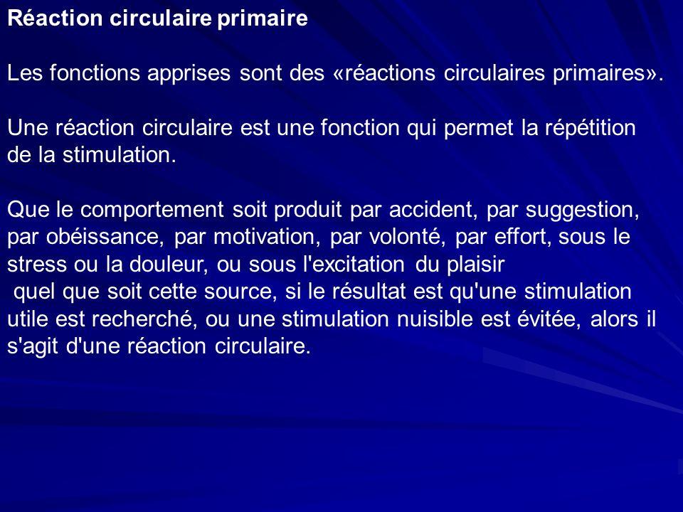 Réaction circulaire primaire Les fonctions apprises sont des «réactions circulaires primaires».