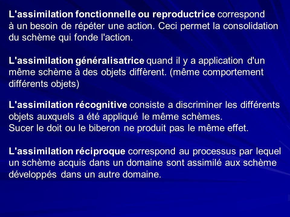 L assimilation fonctionnelle ou reproductrice correspond à un besoin de répéter une action.
