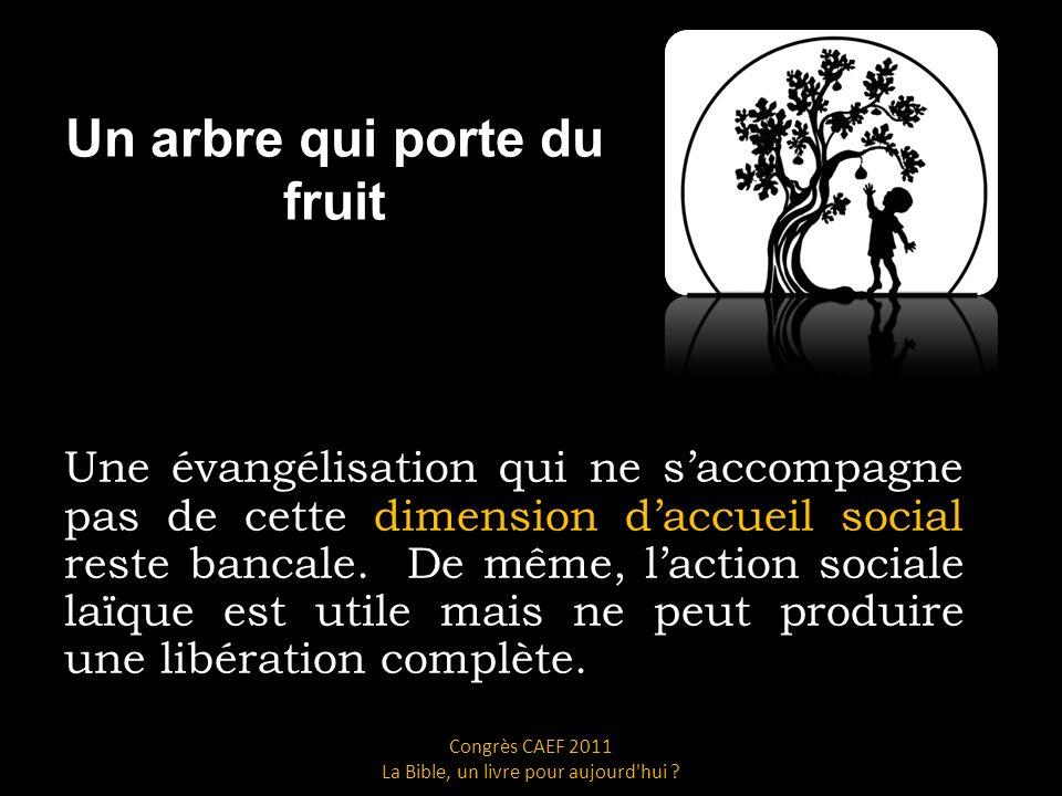 Un arbre qui porte du fruit Une évangélisation qui ne saccompagne pas de cette dimension daccueil social reste bancale.