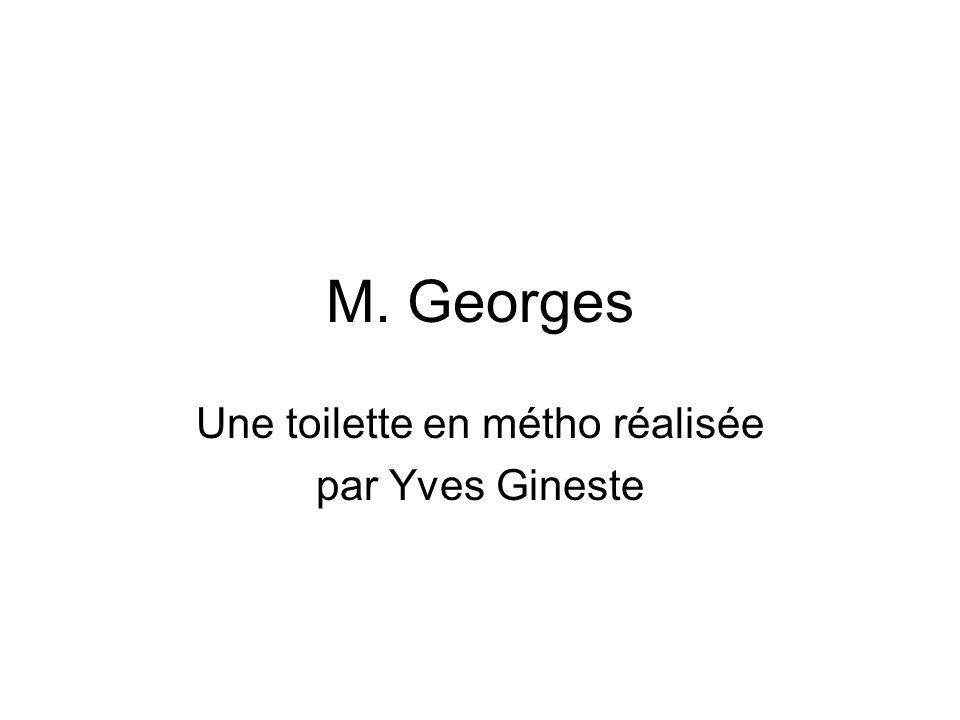 M. Georges Une toilette en métho réalisée par Yves Gineste