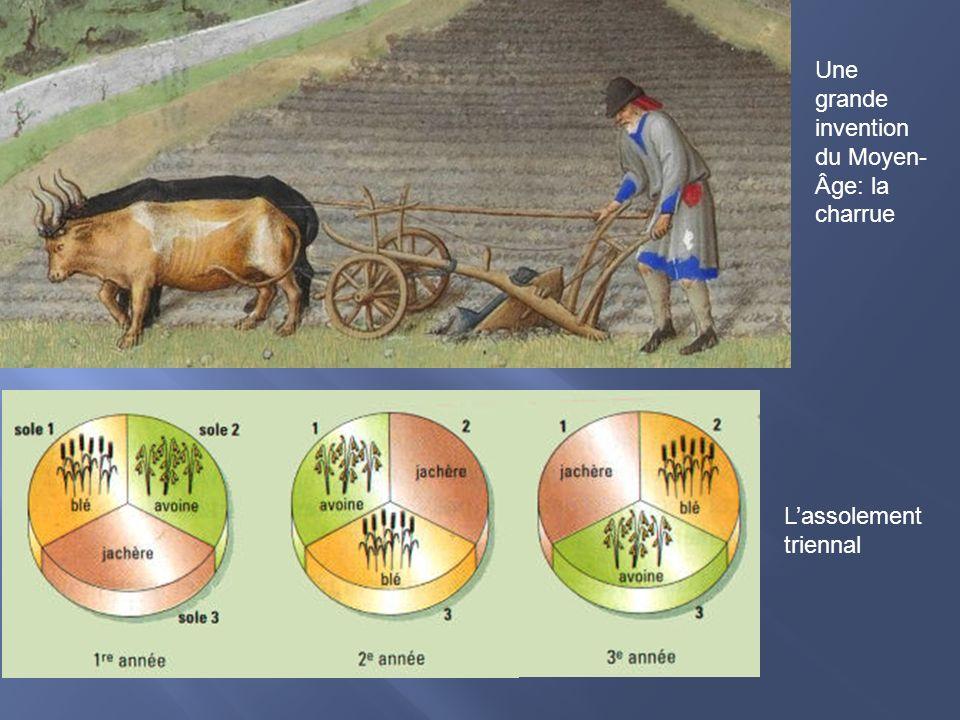 Une grande invention du Moyen- Âge: la charrue Lassolement triennal