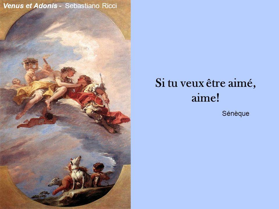 Si tu veux être aimé, aime! Sénèque Venus et Adonis - Sebastiano Ricci