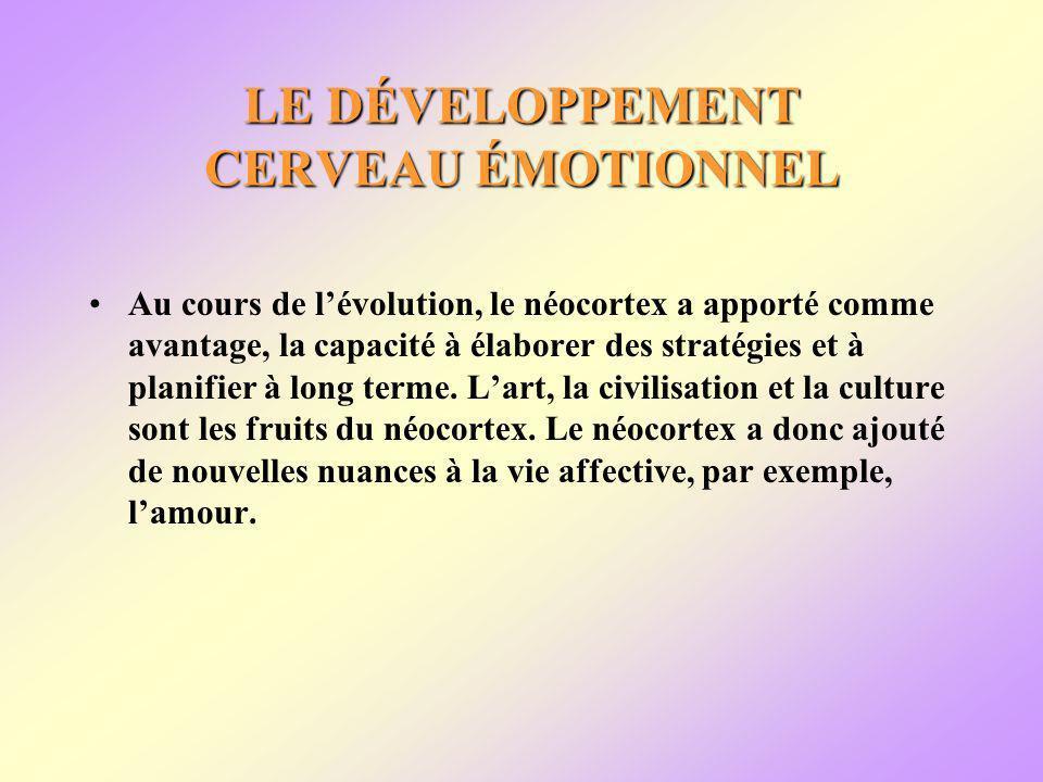 LE DÉVELOPPEMENT CERVEAU ÉMOTIONNEL Au cours de lévolution, le néocortex a apporté comme avantage, la capacité à élaborer des stratégies et à planifier à long terme.
