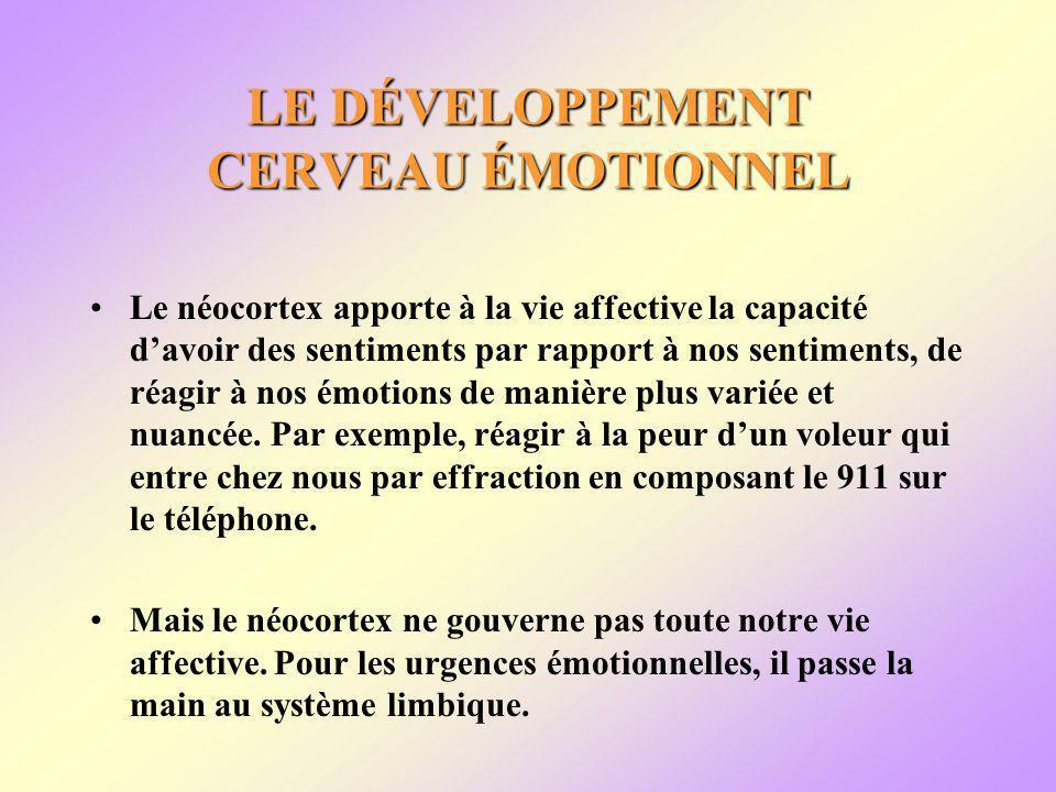 LE DÉVELOPPEMENT CERVEAU ÉMOTIONNEL Le néocortex apporte à la vie affective la capacité davoir des sentiments par rapport à nos sentiments, de réagir à nos émotions de manière plus variée et nuancée.