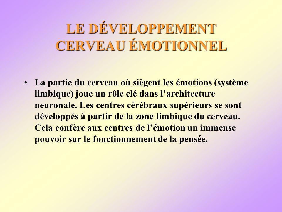 LE DÉVELOPPEMENT CERVEAU ÉMOTIONNEL La partie du cerveau où siègent les émotions (système limbique) joue un rôle clé dans larchitecture neuronale.