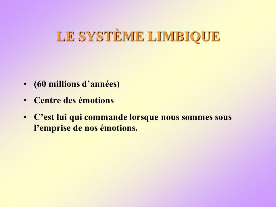 LE SYSTÈME LIMBIQUE (60 millions dannées) Centre des émotions Cest lui qui commande lorsque nous sommes sous lemprise de nos émotions.