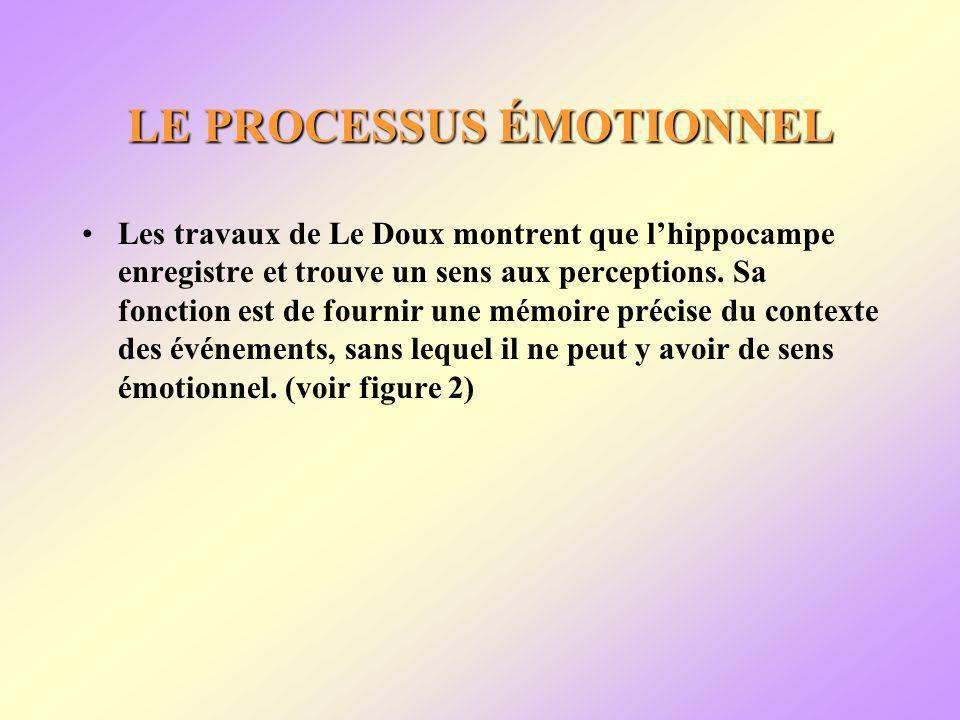LE PROCESSUS ÉMOTIONNEL Les travaux de Le Doux montrent que lhippocampe enregistre et trouve un sens aux perceptions.