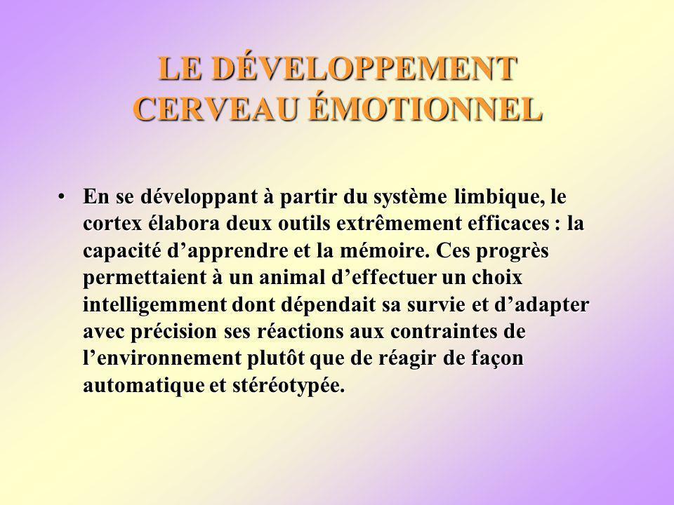 LE DÉVELOPPEMENT CERVEAU ÉMOTIONNEL En se développant à partir du système limbique, le cortex élabora deux outils extrêmement efficaces : la capacité dapprendre et la mémoire.