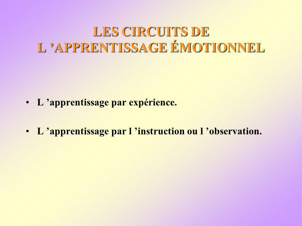 LES CIRCUITS DE L APPRENTISSAGE ÉMOTIONNEL L apprentissage par expérience. L apprentissage par l instruction ou l observation.