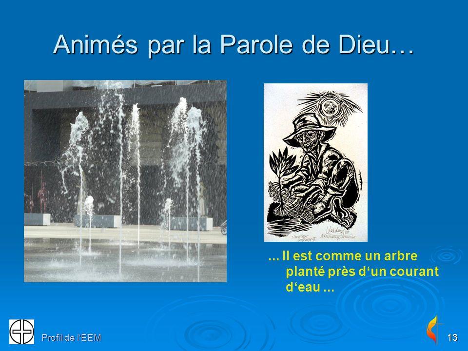 Profil de lEEM13 Animés par la Parole de Dieu…...