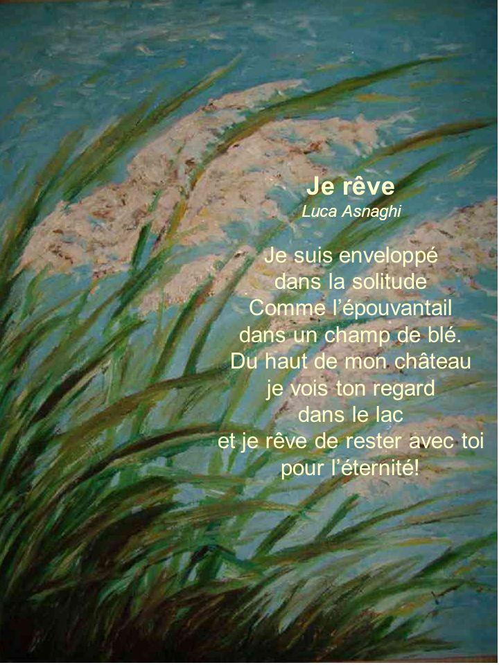 Je rêve Luca Asnaghi Je suis enveloppé dans la solitude Comme lépouvantail dans un champ de blé.
