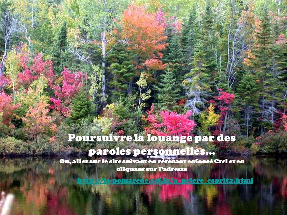 Jésus Tu est le Bon Pasteur, venu pour que nous ayons la vie et que nous layons en abondance.